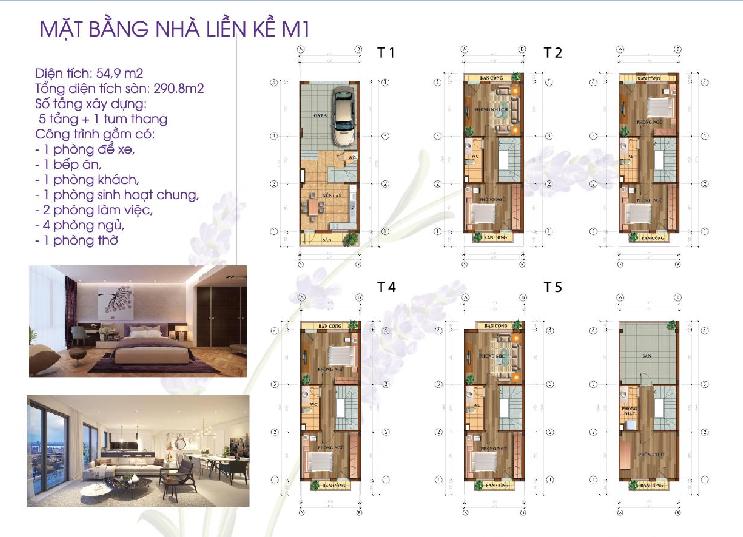 Thiết kế chi tiết các tầng mẫu 1 liền kề Lavender