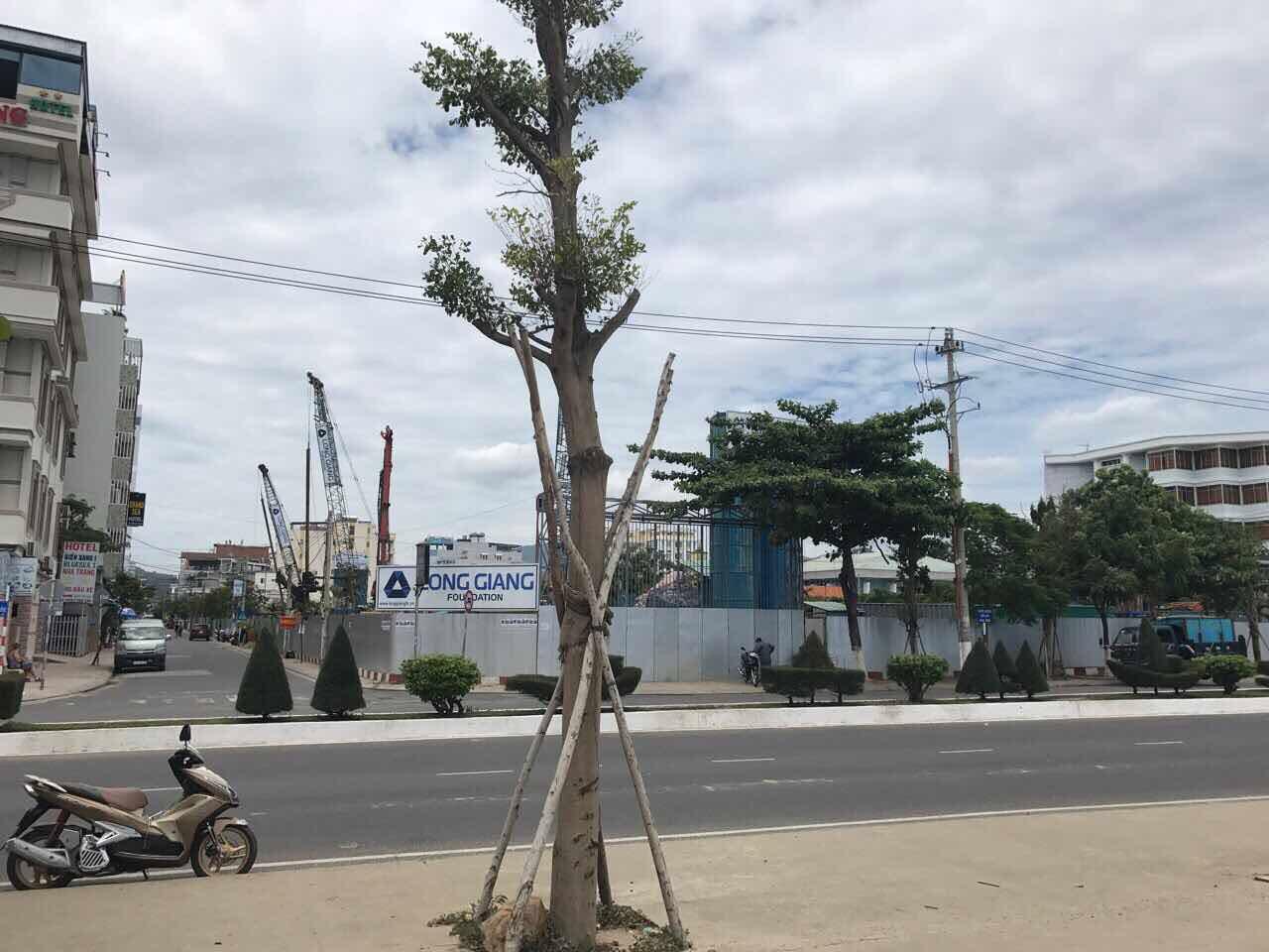 Ảnh Scenia Bay Nha Trang trước mặt