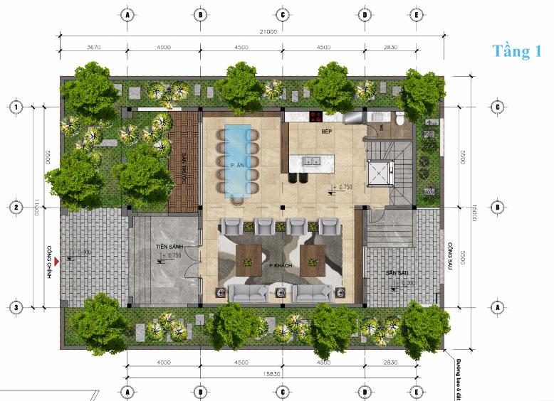 thiết kế tầng 1 biệt thự đơn lập Sunshine wonder villa